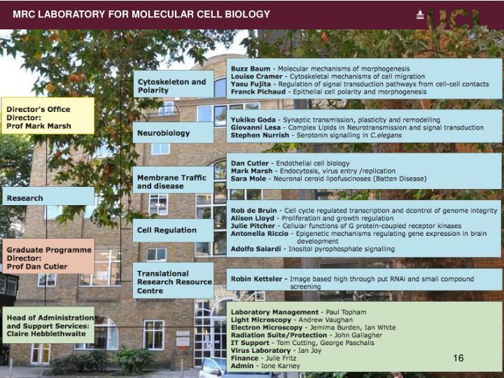 MRC LABORATORY FOR MOLECULAR CELL BIOLOGY