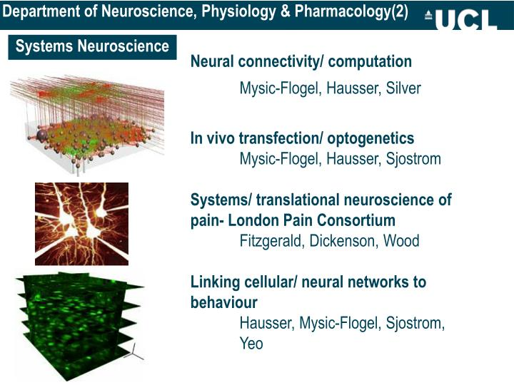 Department of Neuroscience, Physiology & Pharmacology(2)