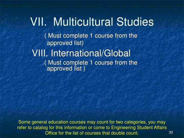 VII.  Multicultural Studies