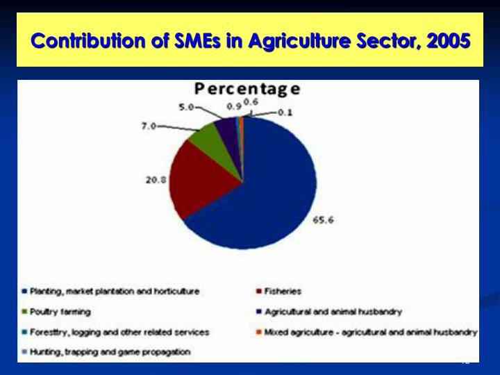 Contribution of SMEs in Agriculture Sector, 2005