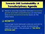 towards sme sustainability a transdisciplinary agenda