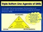 triple bottom line agenda of smes