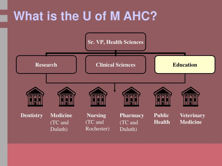 What is the U of M AHC?
