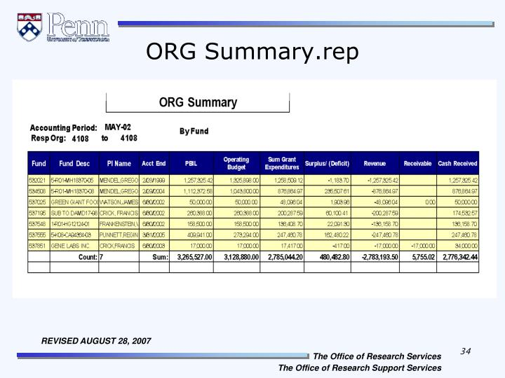 ORG Summary.rep