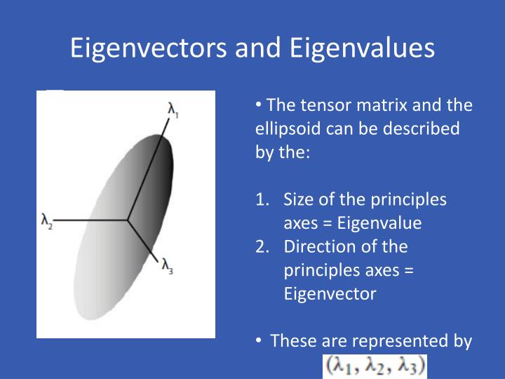 Eigenvectors and