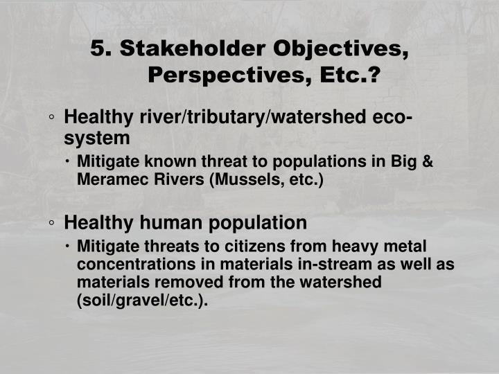 5. Stakeholder Objectives,