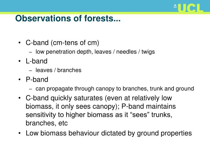Observations of forests...