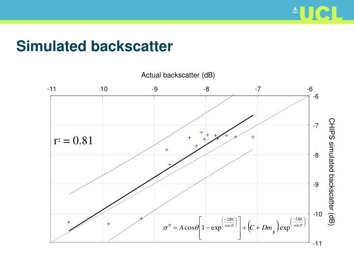 Simulated backscatter