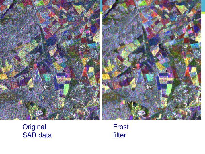 Original SAR data