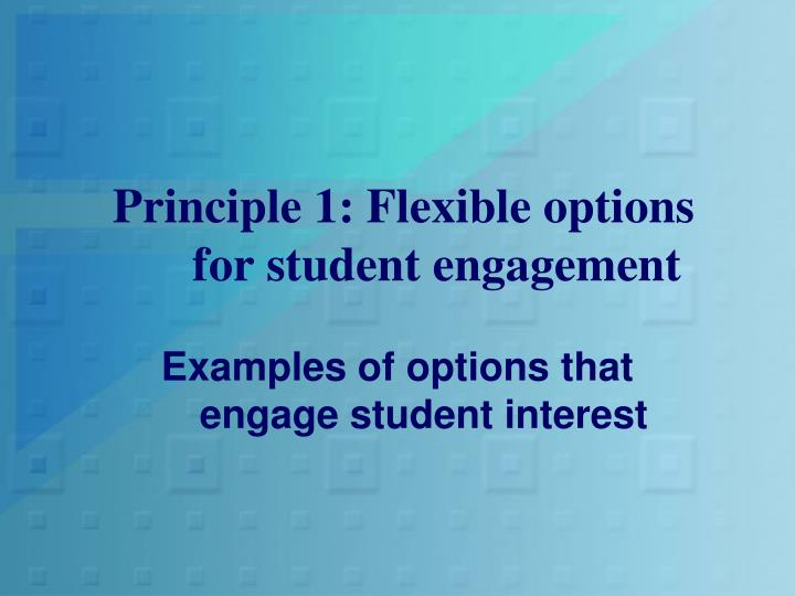 Principle 1: Flexible options for student engagement