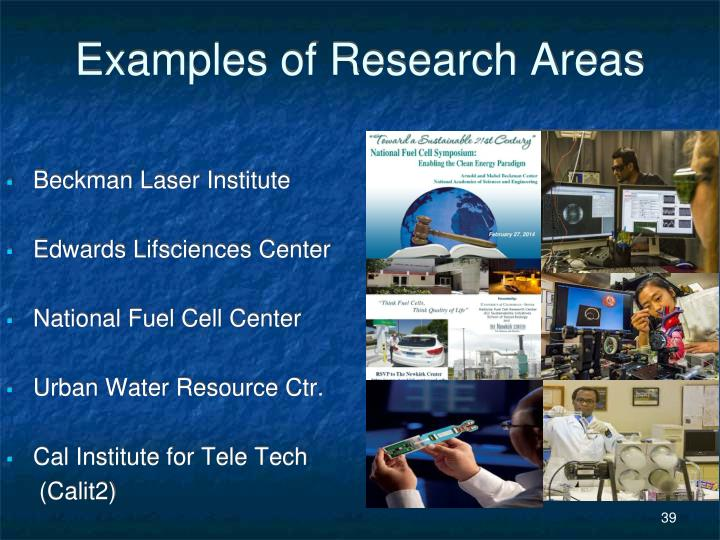 Examples of Research Areas