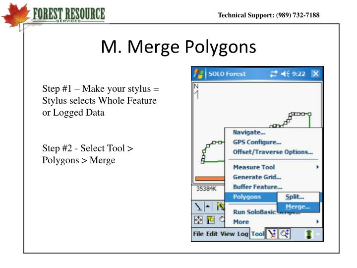 M. Merge Polygons