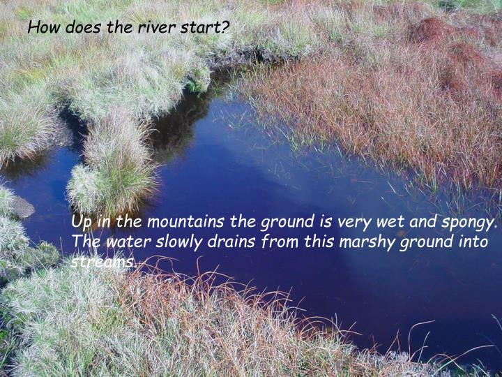 How does the river start?