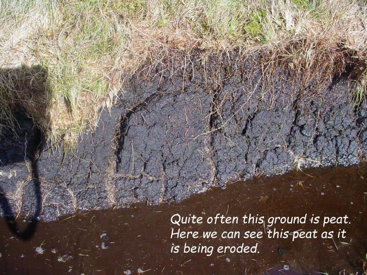 Quite often this ground is peat.