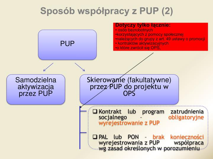Sposób współpracy z PUP (2)
