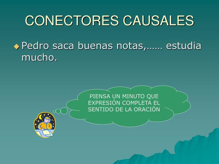 CONECTORES CAUSALES