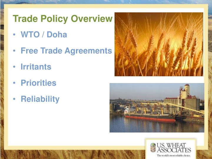 Trade policy overview