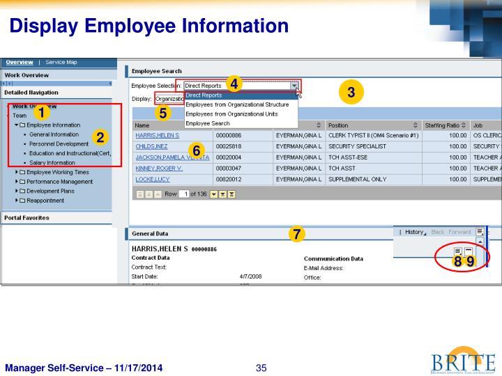 Display Employee Information