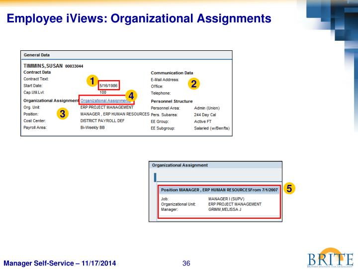 Employee iViews: Organizational Assignments