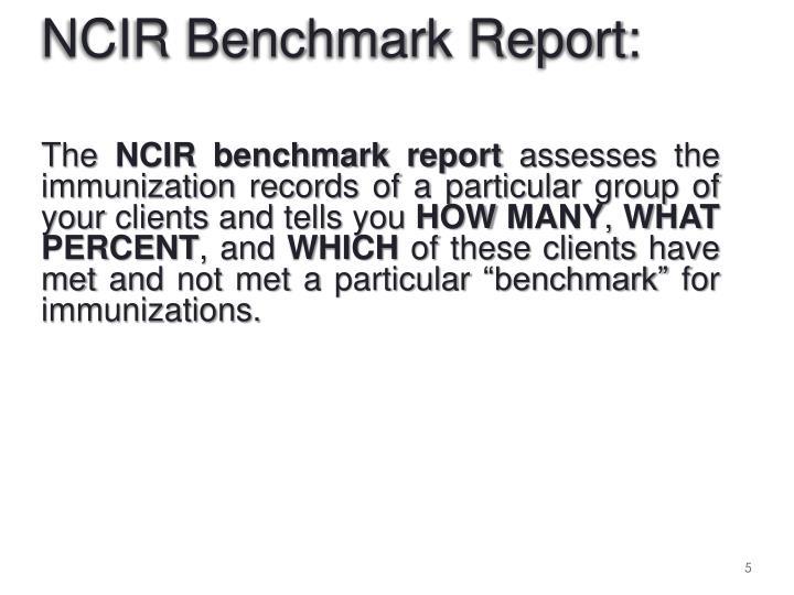 NCIR Benchmark Report: