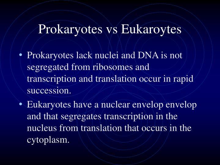 Prokaryotes vs Eukaroytes