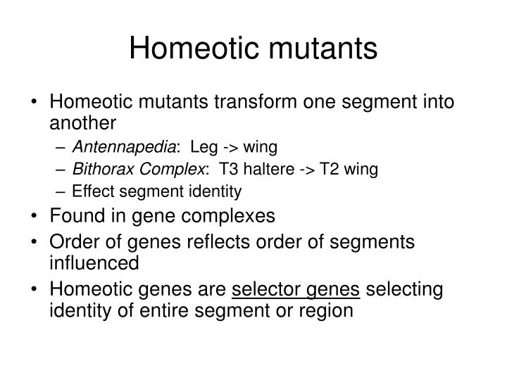 Homeotic mutants