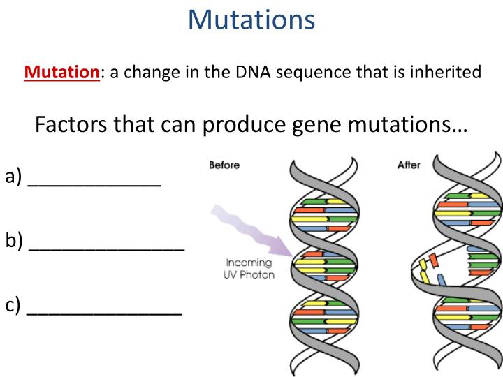 Factors that can produce gene mutations