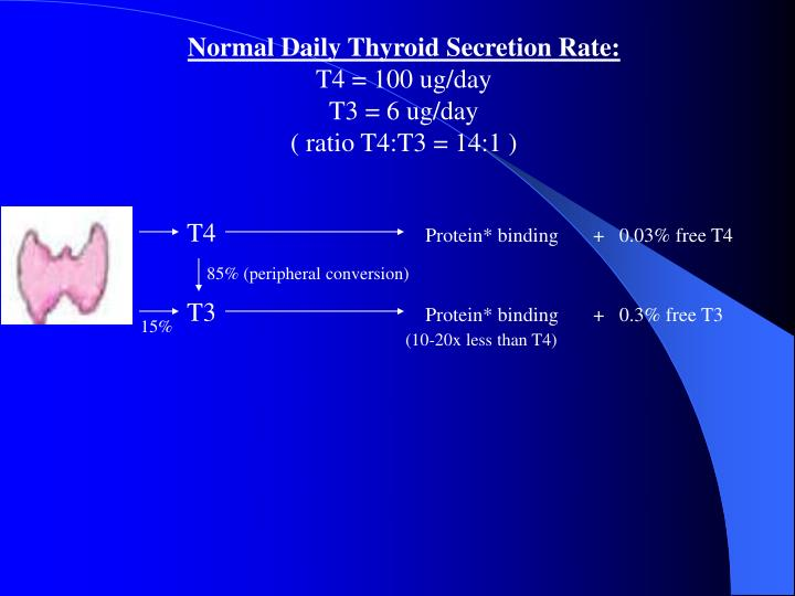 Normal Daily Thyroid Secretion Rate: