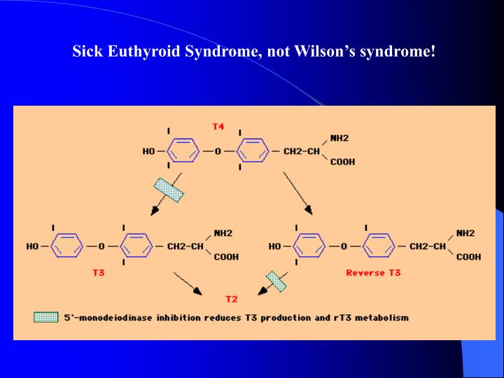 Sick Euthyroid Syndrome, not Wilson's syndrome!