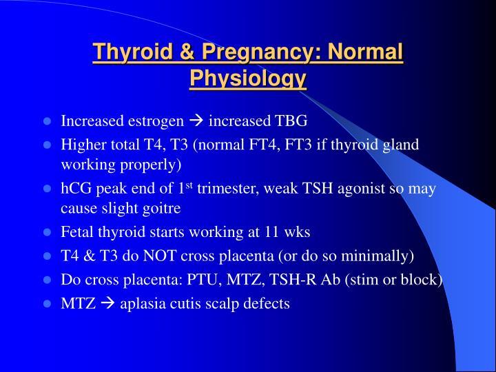 Thyroid & Pregnancy: Normal Physiology