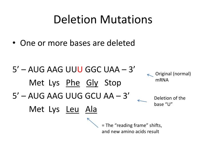 Deletion Mutations