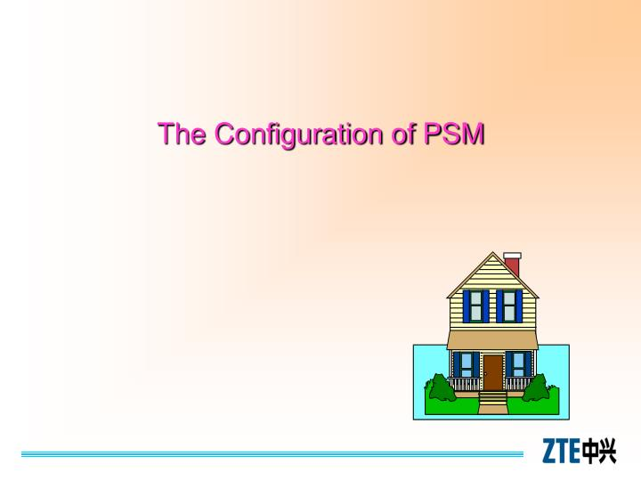 The Configuration of PSM