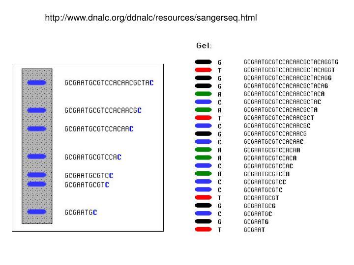 http://www.dnalc.org/ddnalc/resources/sangerseq.html