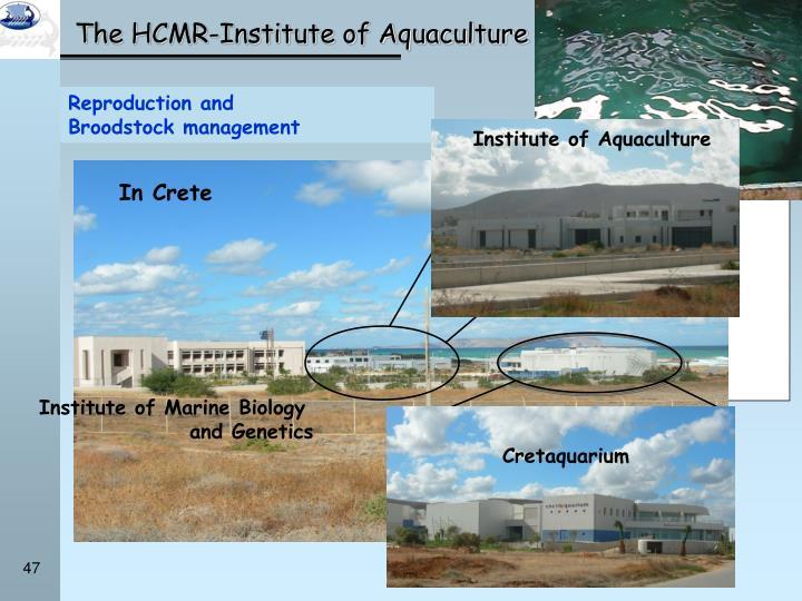 Five research institutes