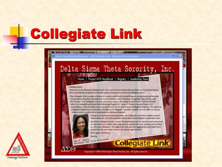 Collegiate Link