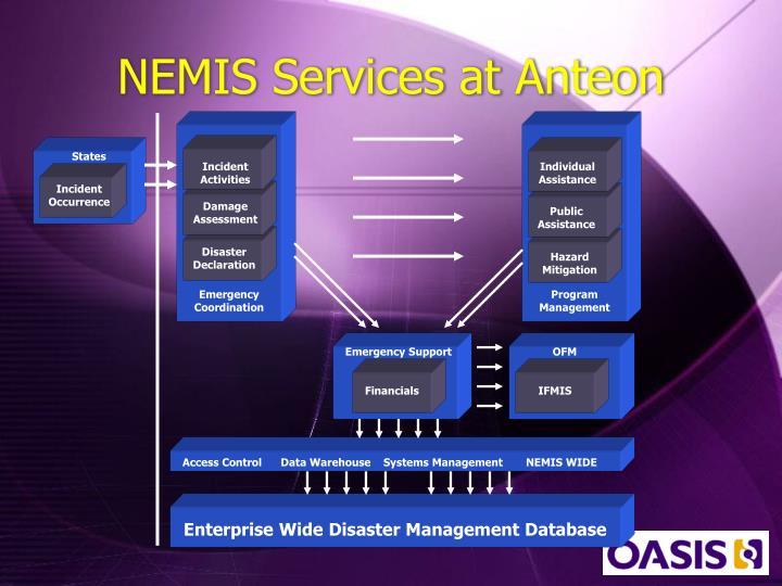NEMIS Services at Anteon