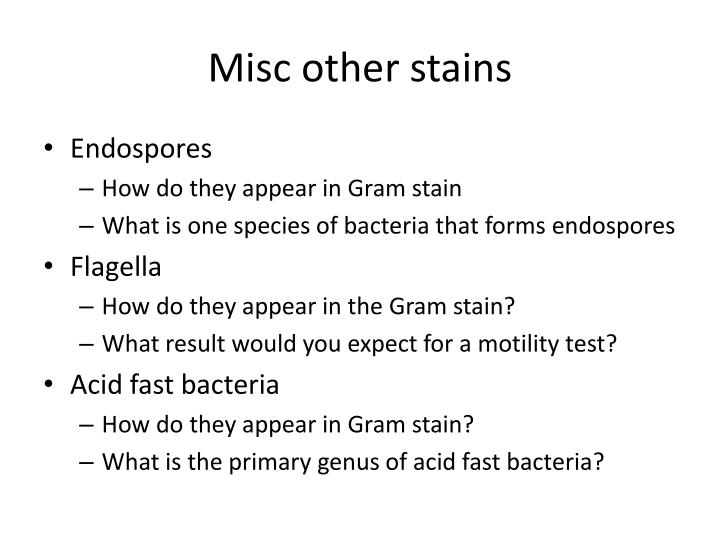 Misc other stains