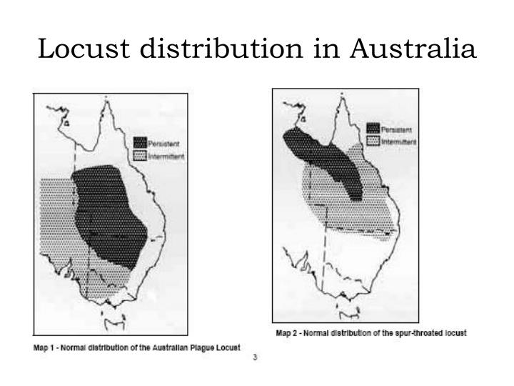 Locust distribution in Australia
