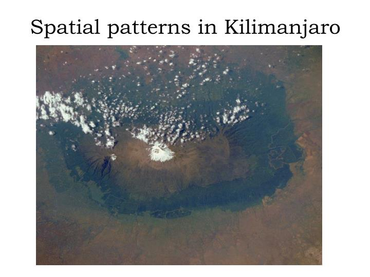 Spatial patterns in Kilimanjaro