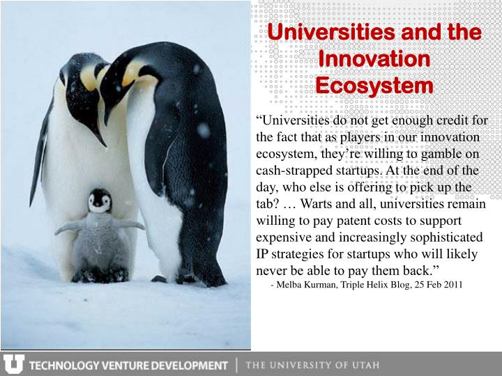 Universities and the