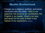 muslim brotherhood