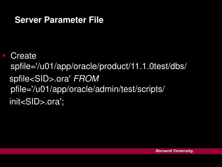 Server Parameter File
