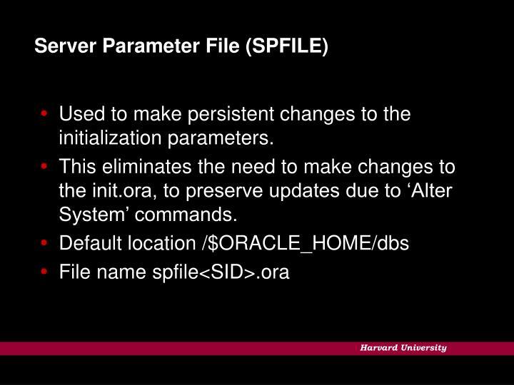 Server Parameter File (SPFILE)