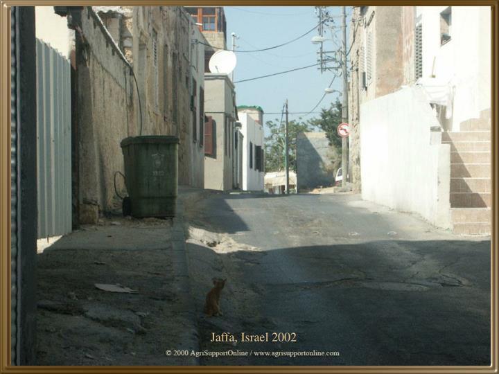 Jaffa, Israel 2002