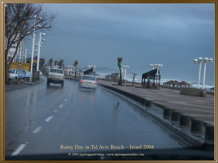 Rainy Day in Tel Aviv Beach – Israel 2004