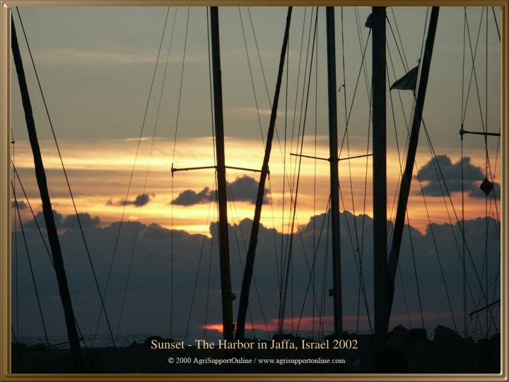 Sunset - The Harbor in Jaffa, Israel 2002