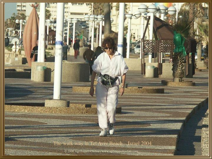 The walk way in Tel Aviv Beach – Israel 2004