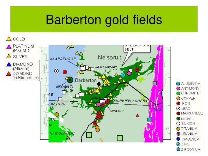Barberton gold fields