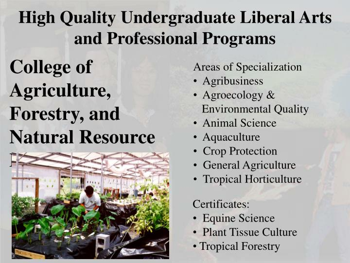 High Quality Undergraduate Liberal Arts and Professional Programs