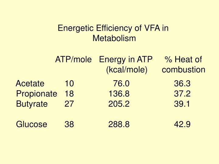 Energetic Efficiency of VFA in